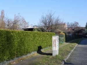 Arenholzsteig, Kleingartenanlage (2012) Arenholzsteig, Berlin-Tempelhof,