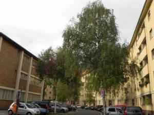Fabriciusstraße (2014) Fabriciusstraße, Berlin-Charlottenburg, Gustav-Adolf-Gemeinde