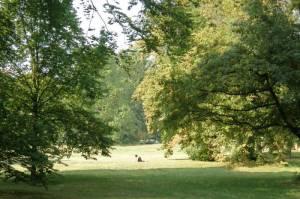 Ruhwaldpark Spandauer Damm, Berlin-Charlottenburg, Postleitzahl 14052 (Neu Westend)