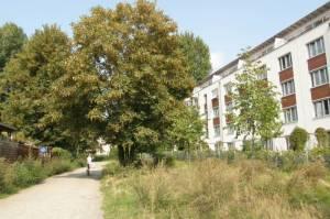 Durchgang zum Wanderweg Thaterstraße, Berlin-Reinickendorf,