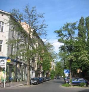 Waldenserstraße (2008) Waldenserstraße, Berlin-Moabit, Zunfthalle