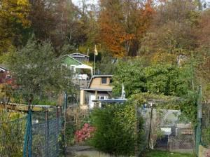 Kleingartenanlage Schutzverband (2016) KGA Schutzverband, Steglitz-Zehlendorf