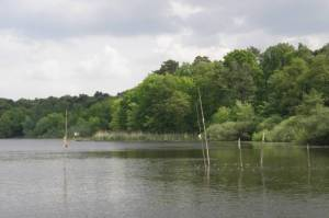 Pohlesee, Wannsee