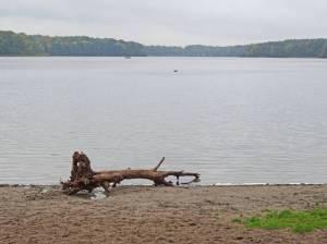 Sacrower See (2016) Sacrower See, Potsdam-Sacrow, Badestrand, Königswald, Schlosspark Sacrow, Institut für Binnenfischerei