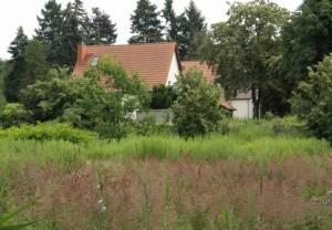 Max-Sabersky-Allee (2009) Max-Sabersky-Allee, Teltow, Teltowkanal, Mauerweg