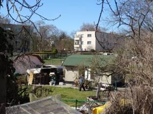 Spekteweg und Kleingartenanlage Neuer Wiesengrund (2018) Spekteweg, Berlin-Falkenhagener Feld, Spektewiesen, Kleingartenanlage Neuer Wiesengrund