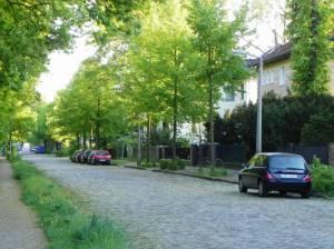 Eddastraße, Berlin-Französisch Buchholz, Einfamilienhäuser, Kleingärten, Viktoriapark
