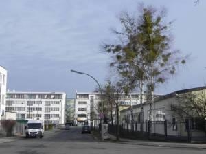 Symeonstraße, Berlin-Marienfelde, Gewerbestraße