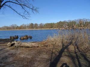 Falkenhagener See (2018) Falkenhagener See, Falkensee, Badestelle, Liegewiese, Spielplatz