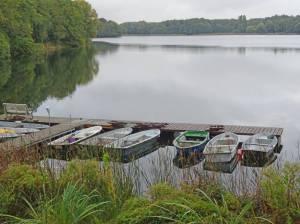 Groß Glienicker See (2016) Groß Glienicker See, Potsdam, Groß Glienicke,