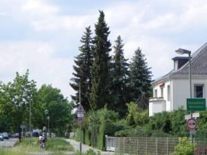 Britzer Straße, Berlin-Mariendorf, Volkspark Mariendorf, Heidefriedhof