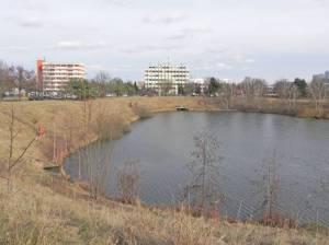 Freseteich und Nahmitzer Damm (2015) Freseteich, Berlin-Marienfelde, Königsgraben, Freizeitpark Marienfelde