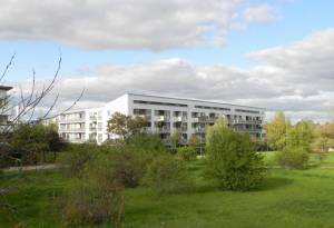 Elfriede-Kuhr-Straße, Berlin-Rudow, Hannah-Arendt-Gymnaskum, Nordpark, Südpark, Gartenstadt Rudow