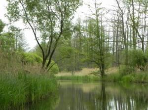 Großes Fließ, Burg (Spreewald), Nordumfluter, Düker, Schleuse Batzlin, Kerngebiet Oberspreewald
