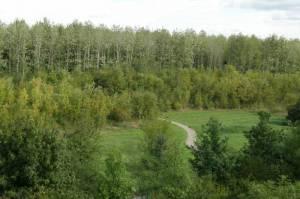 Hönower Weiherkette, Berlin-Hellersdorf, Landschaftsschutzgebiet