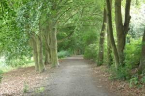 Barnimer Dörferweg Abstecher 1, Tegeler Fließ - Steinbergpark - Nordgraben