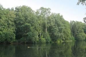 Steinbergsee, Tegel