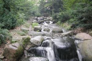 Wasserfall, Steinbergpark