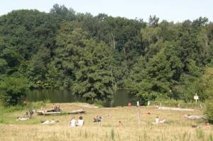 Liegewiese am Teufelssee, Grunewald
