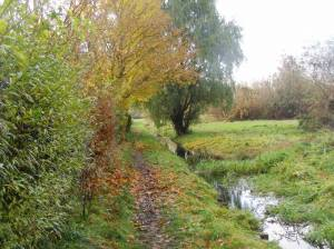 Zingergraben-Wanderweg, südlicher Zingergraben