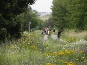 Wuhletal-Wanderweg (2012) Wuhletal-Wanderweg, 1. Etappe, Vom S-Bahnhof Ahrensfelde zum S-Bahnhof Wuhletal (Grüner Hauptweg 14)