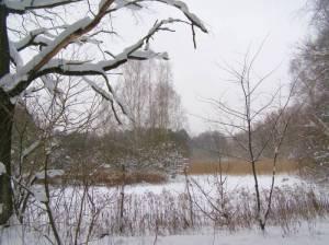 Naturschutzgebiet Neue Wiesen (Winter 2010) Rundwanderweg Müggelsee – Langer See, Großer Müggelsee – Langer See – Müggelturm