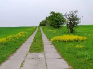 Karower Weg (2010) Lindenberger Korridor, Etappe 4, Von Wartenberg über Lindenberg nach Karow