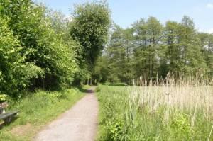 Wanderweg am Torstich, Hermsdorf