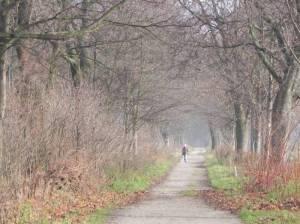 Stadtrandpark Neue Wiesen (2010) Stadtrandpark Neue Wiesen, Berlin-Karow