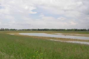 Landschaftspark Rudow-Altglienicke, Mauerstreifen, A113