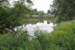 Kiessee (2009) Kiessee, Landschaftspark Rudow-Altglienicke