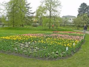 Am Römersgrün und Britzer Garten (2015) Am Römersgrün, Berlin-Britz, Britzer Garten