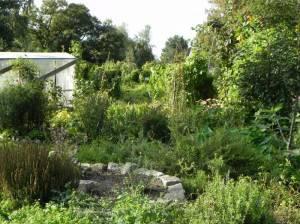 Park am Gleisdreieck, Community Gardens (2011) Community Gardens, Park Am Gleisdreieck