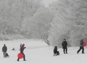 Nord-Süd-Weg, Etappe 2, Insulaner, Hans-Baluschek-Park, Südkreuz, Cheruskerpark, Nelly-Sachs-Park, Tilla-Durieux-Park, Großer Tiergarten
