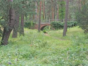 Waldfriedhof Wilmersdorf (2013) Waldfriedhof Wilmersdorf, Stahnsdorf, Erwin Barth, Hans Baluschek