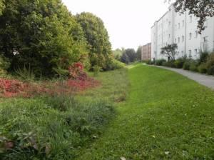Gartenkulturpfad Neukölln, Köllnische Heide, Von-der-Schulenburg-Park, High-Deck-Siedlung, Volksgarten