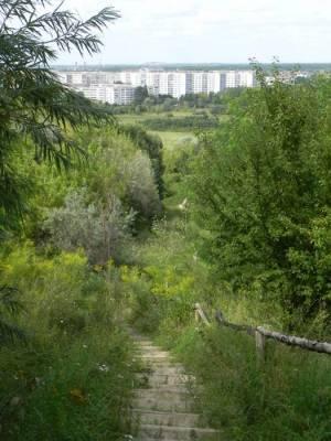 Aufstieg zum Nordplateau der Ahrensfelder Berge (2012) Ahrensfelder Berge, Berlin-Marzahn, Wuhletal, Landschaftspark Wuhletal, Park am Weidengrund, Eichepark