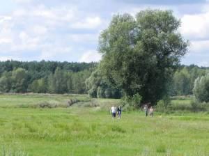 Erpetal (2012) Erpetal, Dahlwitz-Hoppegarten, Neuenhagener Mühlenfließ, Heidemühle, Waldesruh