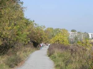 Wanderweg um den Kienberg (2012) Wanderung um den Kienberg, Berlin-Marzahn, Jelena-Šantić-Friedenspark,, Landschaftspark Wuhletal, Rohrbruch, Plattenbaumuseum