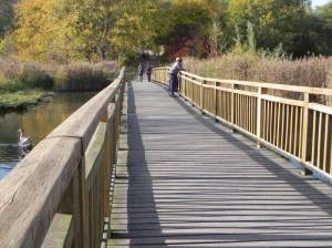 Rohrbruchbrücke, Berlin-Hellersdorf, Kienberg, Wuhle, Landschaftspark Wuhletal