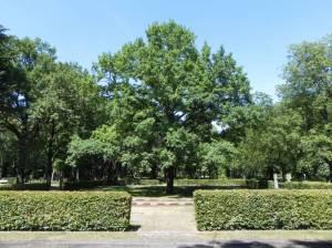 Gefallene des 1. Weltkrieges, Parkfriedhof Marzahn