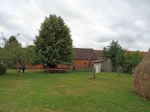 Bauernmuseum, Freifläche (2016) Bauernmuseum, Schlepzig, Heimatmuseum, Landwirtschaftliche Sammlung