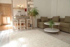 Brunnen Apartments - Engelfittich, Brunnenstrasse 147, 10115 Berlin