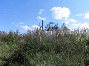 Hobrechtswald, Beobachtungsturm, Große Reinigungsteiche, Kleine Reinigungsteiche, Hobrechtswald
