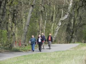66-Seen-Wanderweg in der Stolper Heide (2014) 66-Seen-Wanderweg, Birkenwerder bis Heiligensee, Sumpf- und Vogelschutzgebiete, Briese, Oder-Havel-Kanal