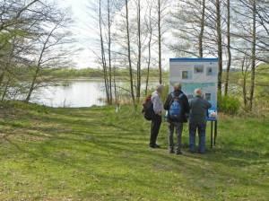 Havelwiesen (2014) Havelwiesen, Hennigsdorf, Wasserwerk Stolpe, Vogelschutzgebiet,  Havel, Stolper Heide