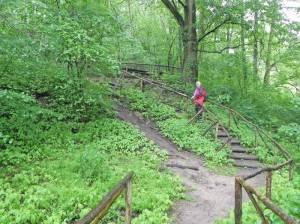 66-Seen-Wanderweg, Naturschutzgebiet Lange Dammwiesen und unteres Annatal (2014) 66-Seen-Wanderweg, Strausberg bis Rüdersdorf, Naturschutzgebiet Lange Dammwiesen, Lemkes Mühle, Stienitzsee, Strausberger Mühlenfließ, Museumspark Rüdersdorf