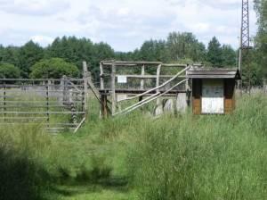 Feuchtwiese Glauer Tal, Beobachtungsturm (2014) Feuchtwiese, Glau, Wildgehege Glauer Tal, Naturparkzentrum Nuthe-Nieplitz