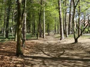 Joseph Brix  – Felix Genzmer – Park (2016) Joseph Brix  – Felix Genzmer – Park, Gartenstadt Frohnau, Säulenkapitell Berliner Dom, Edelteich, Grabstelle