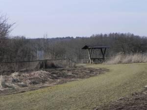 Naturschutzgebiet Niedermoorwiesen am Tegeler Fließ, Rastplatz am Köppchensee (2015) Niedermoorwiesen am Tegeler Fließ, Berlin-Blankenfelde, Köppchensee, ehemaliger Müllberg, Bienenweide